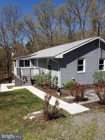 64 Trofton Hollow Ct., GREAT CACAPON, WV 25422 (#WVMO118408) :: ROSS | RESIDENTIAL