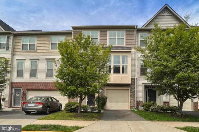 42590 Chisholm Drive, BROADLANDS, VA 20148 (#VALO437390) :: Jim Bass Group of Real Estate Teams, LLC