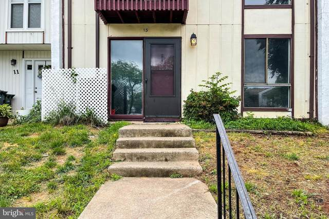 13 Carousel Court, STERLING, VA 20164 (#VALO437394) :: The Mike Coleman Team
