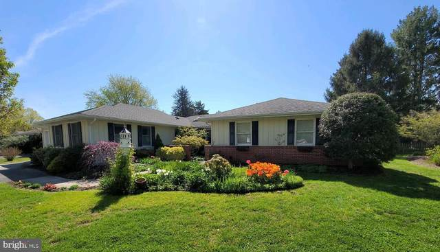519 N Kent Street, CHESTERTOWN, MD 21620 (#MDKE118056) :: Bright Home Group