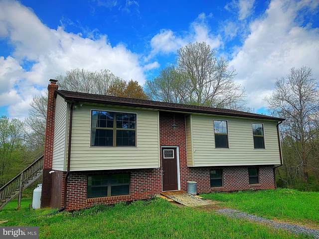 19202 Sycamore Lane, CULPEPER, VA 22701 (#VACU144378) :: Bruce & Tanya and Associates