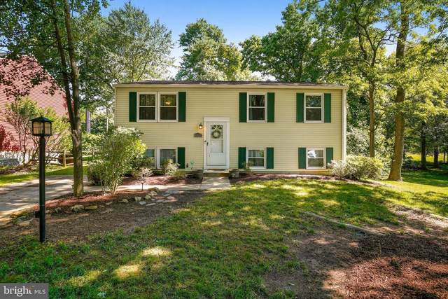 6253 Sandchain Road, COLUMBIA, MD 21045 (#MDHW294074) :: The Redux Group