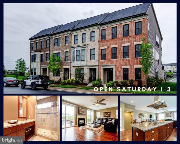 42238 Palladian Blue Terrace, BRAMBLETON, VA 20148 (#VALO437522) :: Bruce & Tanya and Associates