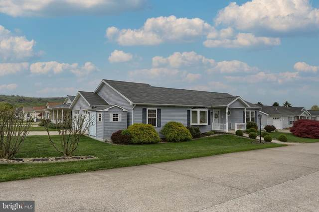 739 Tow Path Lane, PINE GROVE, PA 17963 (#PASK135182) :: The Joy Daniels Real Estate Group