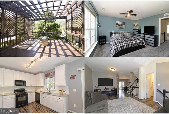 21785 Ladyslipper Square, ASHBURN, VA 20147 (#VALO437554) :: Colgan Real Estate