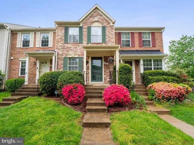 13538 Ruddy Duck Road, CLIFTON, VA 20124 (#VAFX1198776) :: Bruce & Tanya and Associates