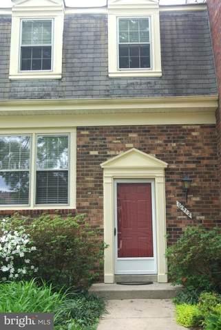 10512 Pennydog Lane, SILVER SPRING, MD 20902 (#MDMC756826) :: Keller Williams Flagship of Maryland