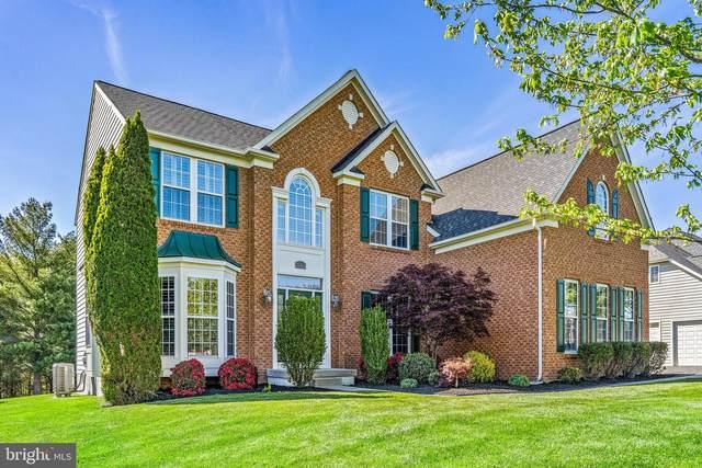 25465 Lemon Tree Place, CHANTILLY, VA 20152 (#VALO437688) :: Grace Perez Homes
