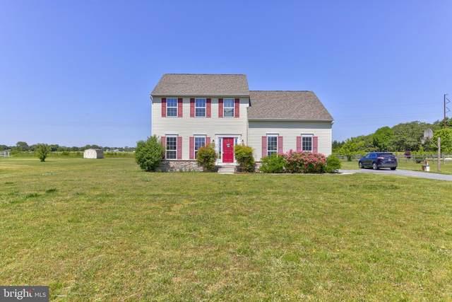 20388 Blueberry Drive, LINCOLN, DE 19960 (#DESU182482) :: Bright Home Group