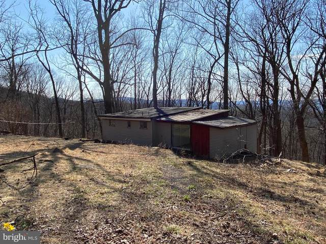 106 Mountain Spring Road, FRONT ROYAL, VA 22630 (#VAWR143576) :: AJ Team Realty