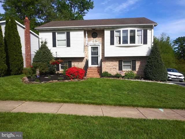 116 Gray Mount Drive, ELKTON, MD 21921 (#MDCC174568) :: RE | Kopman - Real Estate Associates