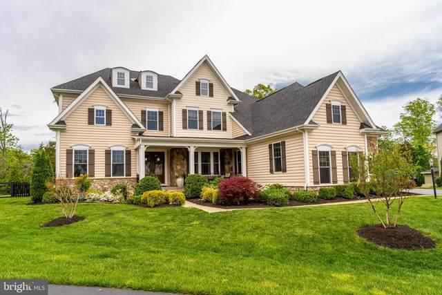 24135 High Falls Court, ASHBURN, VA 20148 (#VALO437818) :: Colgan Real Estate