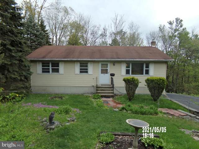 3008 Mountain Terrace, STROUDSBURG, PA 18360 (#PAMR107574) :: The Mike Coleman Team