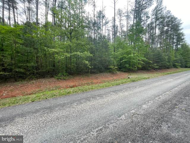 Erin Ln, MINERAL, VA 23117 (#VALA123200) :: ExecuHome Realty