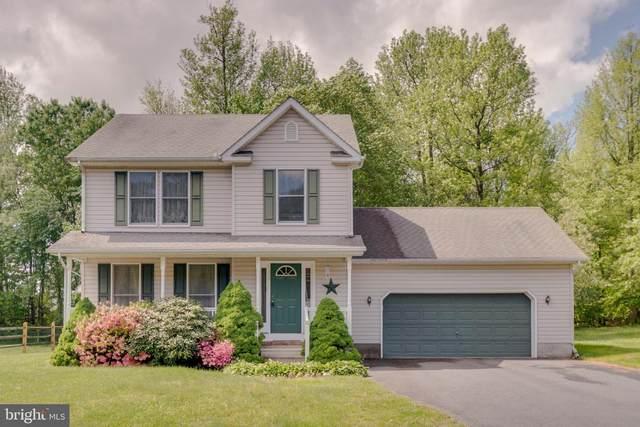 110 Milhollan Drive, ELKTON, MD 21921 (#MDCC174592) :: RE   Kopman - Real Estate Associates