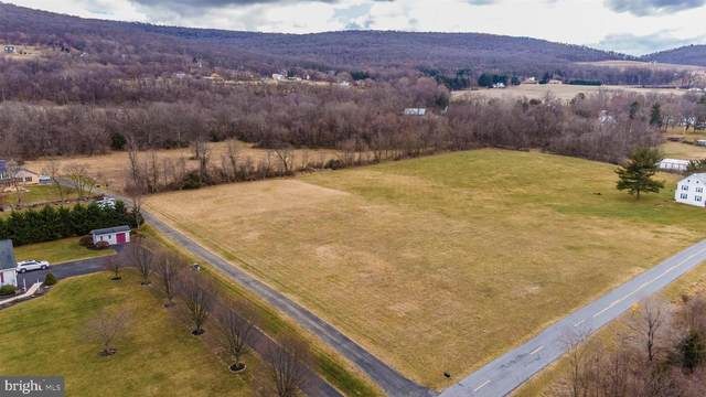 23418 Whitetail Road, SMITHSBURG, MD 21783 (#MDWA179596) :: ExecuHome Realty