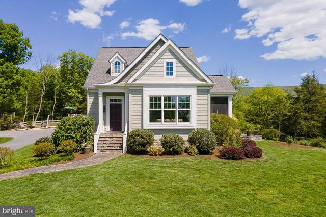 42 Creekside Lane, NEW MARKET, VA 22844 (#VASH122198) :: ExecuHome Realty