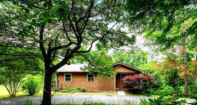 353 King David Drive, LINDEN, VA 22642 (MLS #VAWR143592) :: PORTERPLUS REALTY