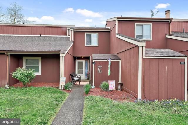 228 Brian Drive, ENOLA, PA 17025 (#PACB134652) :: The Joy Daniels Real Estate Group