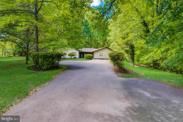 13004 Forest Drive, BOWIE, MD 20715 (#MDPG605788) :: Dart Homes