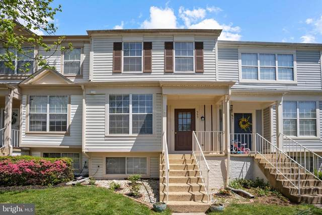 353 Stable View Terrace NE, LEESBURG, VA 20176 (#VALO437944) :: Keller Williams Realty Centre