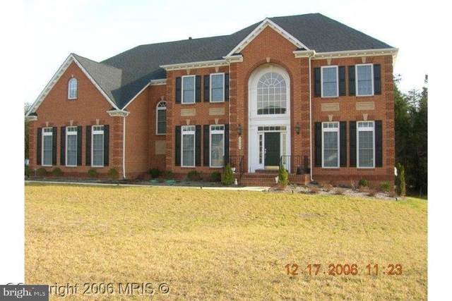 27486 Paddock Trail Place, CHANTILLY, VA 20152 (#VALO437968) :: The MD Home Team