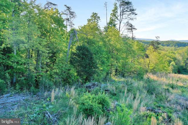 LOT 21 Creek Bend Court, STEPHENS CITY, VA 22655 (#VAWR143606) :: The Putnam Group
