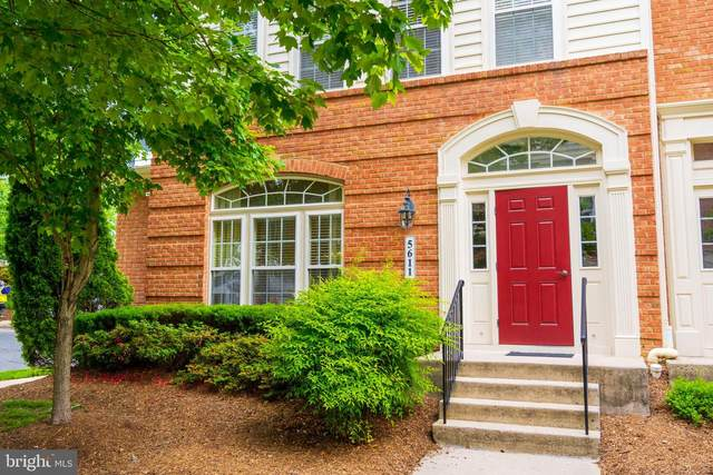 5611 Harrington Falls Lane B, ALEXANDRIA, VA 22312 (#VAFX1199650) :: AJ Team Realty