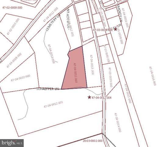 0 Park Street, LANDINGVILLE, PA 17942 (#PASK135234) :: The Joy Daniels Real Estate Group