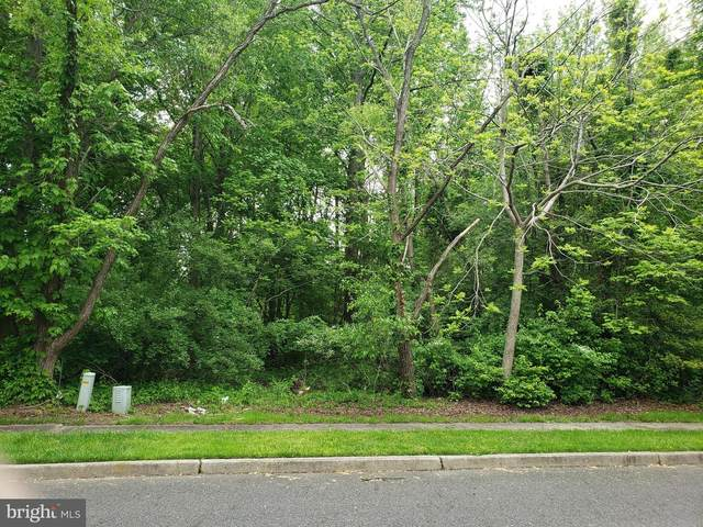 6 Oak Avenue, VOORHEES, NJ 08043 (#NJCD419440) :: Colgan Real Estate