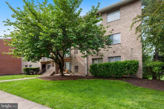 7997 Audubon Avenue D3, ALEXANDRIA, VA 22306 (#VAFX1199702) :: Grace Perez Homes