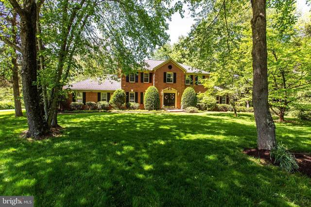 928 Rolling Holly Drive, GREAT FALLS, VA 22066 (#VAFX1199716) :: Great Falls Great Homes