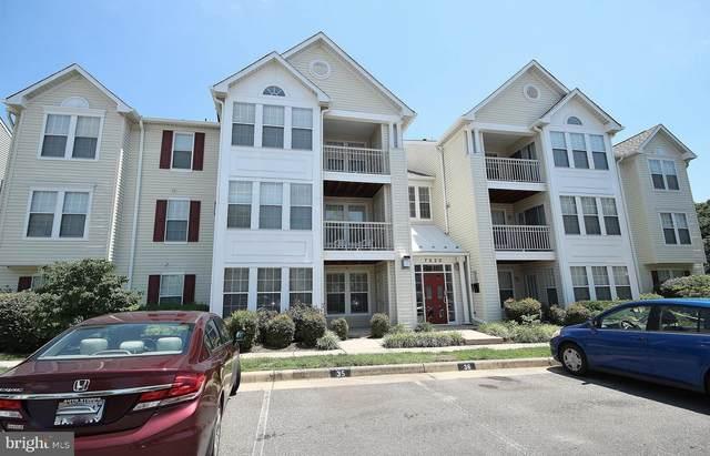 7520 Snowpea Court J 33, ALEXANDRIA, VA 22306 (#VAFX1199738) :: Debbie Dogrul Associates - Long and Foster Real Estate