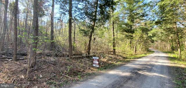 Lot 39 Walnut Way, PORT ROYAL, PA 17082 (#PAJT101046) :: Ramus Realty Group