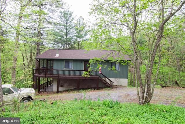 102 Bitternut Lane, MOUNT JACKSON, VA 22842 (#VASH122208) :: Eng Garcia Properties, LLC
