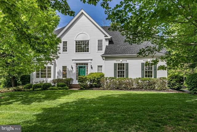 6 Stone Mountain Court, SKILLMAN, NJ 08558 (#NJSO114668) :: The Matt Lenza Real Estate Team