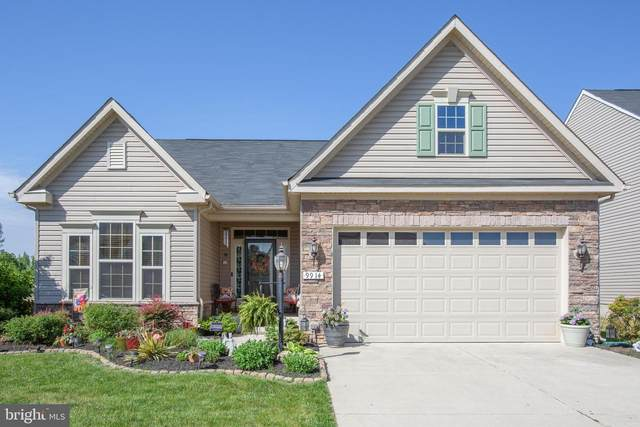 9914 Box Oak Court, FREDERICKSBURG, VA 22407 (#VASP231318) :: RE/MAX Cornerstone Realty