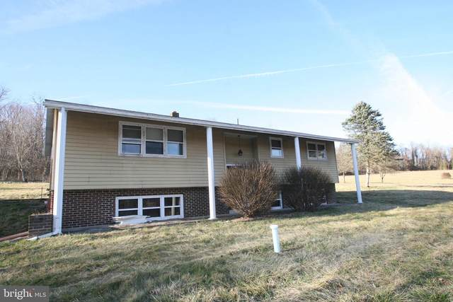 990 Front Street NW, MC VEYTOWN, PA 17051 (#PAMF100608) :: ExecuHome Realty