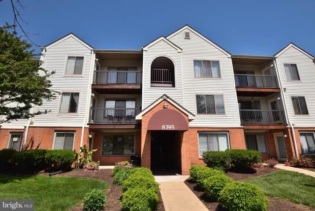 8395 Buttress Lane #202, MANASSAS, VA 20110 (#VAMN141918) :: Jacobs & Co. Real Estate