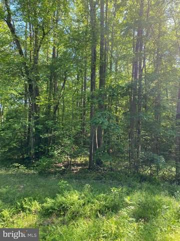 Slash Pine Circle, RUTHER GLEN, VA 22546 (#VACV124174) :: RE/MAX Cornerstone Realty