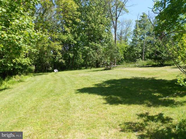 663 Carr Hill Road, GETTYSBURG, PA 17325 (#PAAD116072) :: Iron Valley Real Estate