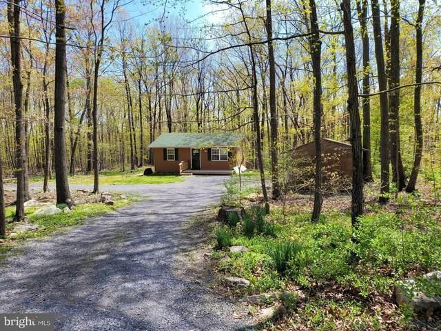 134 Red Fox Trl, WINCHESTER, VA 22602 (#VAFV164002) :: Eng Garcia Properties, LLC