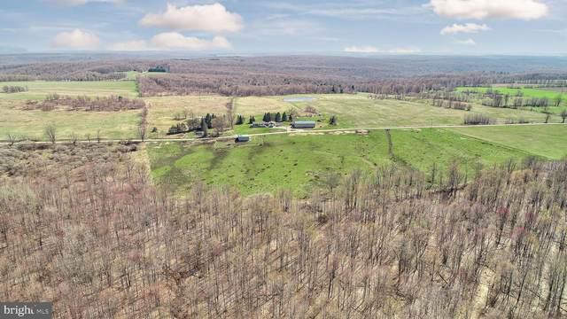 514 Kidney Rd, GENESEE, PA 16941 (#PAPO100090) :: Jim Bass Group of Real Estate Teams, LLC
