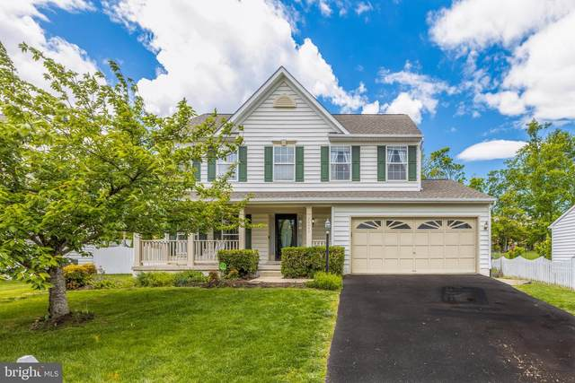 20443 Middlebury Street, ASHBURN, VA 20147 (#VALO438146) :: Colgan Real Estate