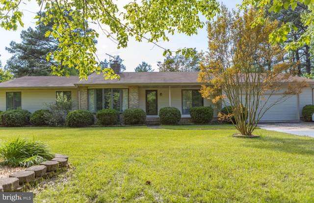 6408 Kent Point Road, STEVENSVILLE, MD 21666 (#MDQA147696) :: The Riffle Group of Keller Williams Select Realtors