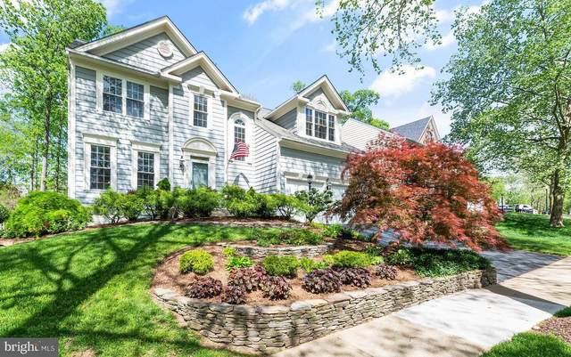 43184 Edgartown Street, CHANTILLY, VA 20152 (#VALO438214) :: Grace Perez Homes
