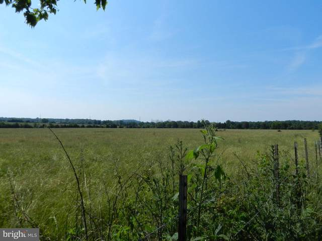 LOT 1 Blackjack, CULPEPER, VA 22701 (#VACU144472) :: Jacobs & Co. Real Estate
