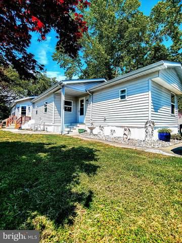 33425 Clover Street #22428, LEWES, DE 19958 (#DESU182810) :: Boyle & Kahoe Real Estate