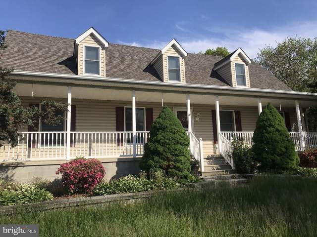 22 Texis Lane, MIDDLETOWN, DE 19709 (#DENC526354) :: The Matt Lenza Real Estate Team