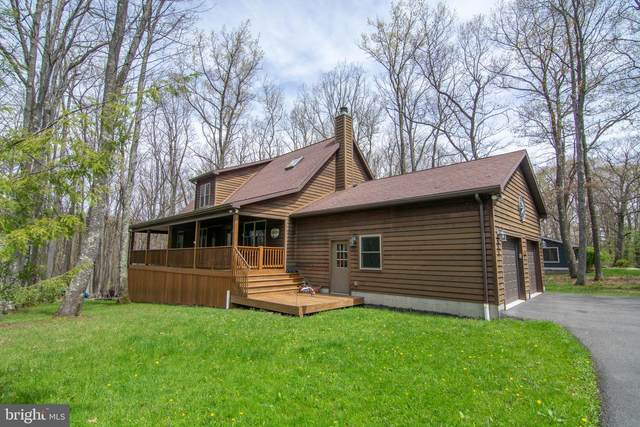 76 Mamie Drive, SWANTON, MD 21561 (#MDGA135154) :: ExecuHome Realty